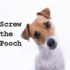 Thumbnail image for Prezi Screws the Pooch- Prezi for Windows doesn't work.
