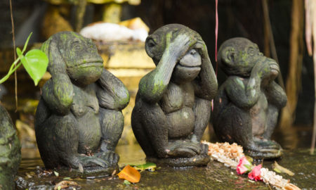 hear no evil see no evil speak no evil monkeys